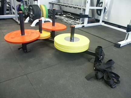 Prowler Olympic Sled With Harness